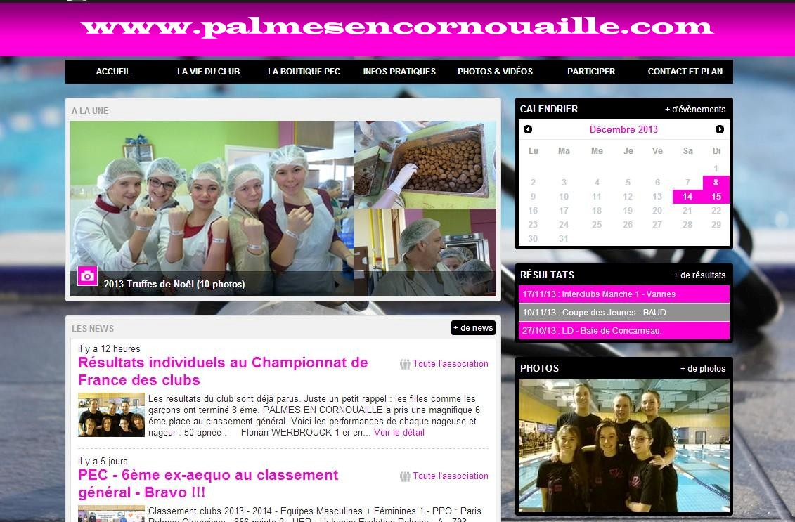 PALMES EN CORNOUAILLE |www.palmesencornouaille.com | PEC - NOUVEAU SITE WEB dans *** NEWS *** projet4_palmes